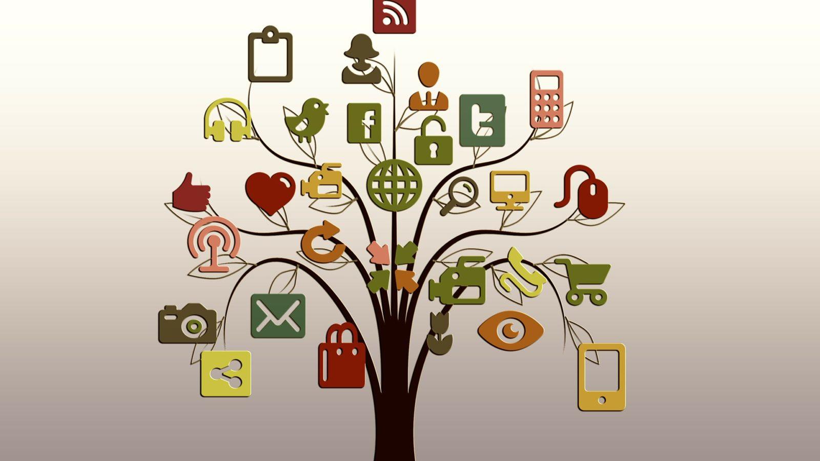 albero-web-social-interconnessione